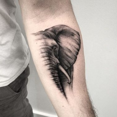 A realism portrait tattoo of an elephant