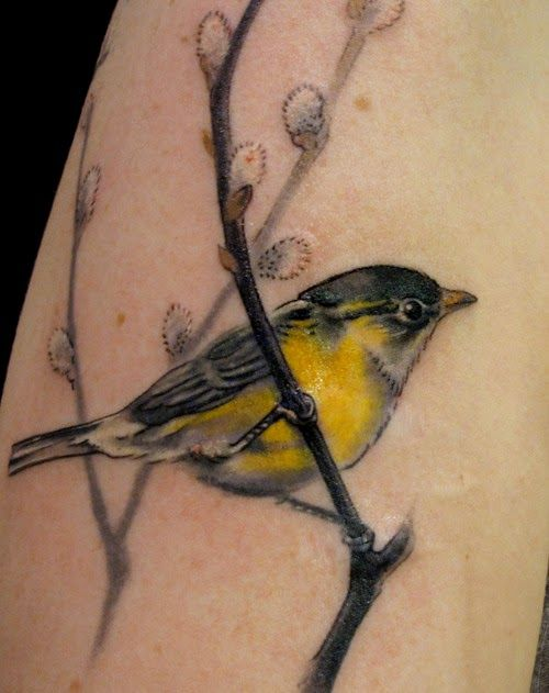 A realism tattoo of a yellow finch perched on a branch
