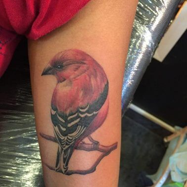 A realism tattoo of a red finch by Verve Tattoo Studio