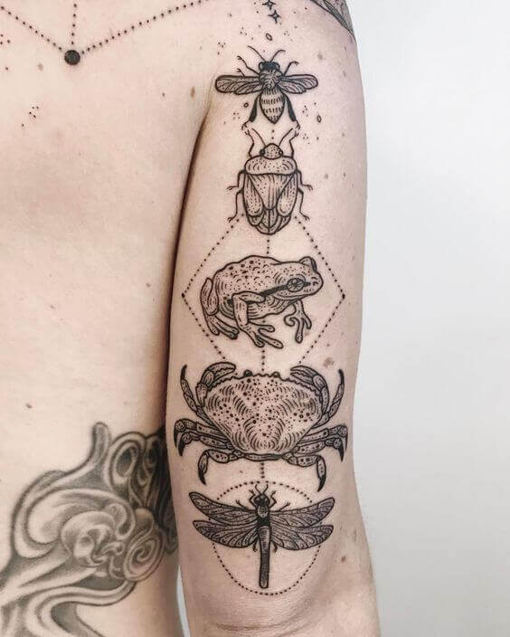 Realism tattoos of a bee, a beetle, a toad, a crab, and a dragonfly