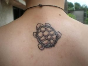 A linework tattoo of a baby turtle