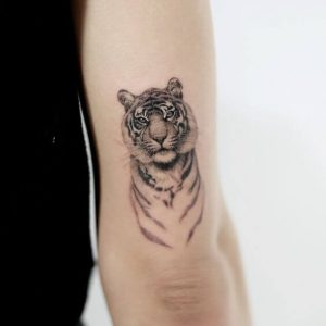 A minimalism portrait tattoo of a tiger done on the tricep