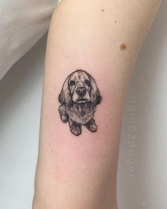 Cocker Spaniel Dog Tattoo