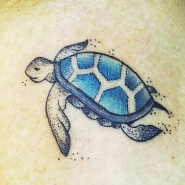 Coloured Turtle Tattoo