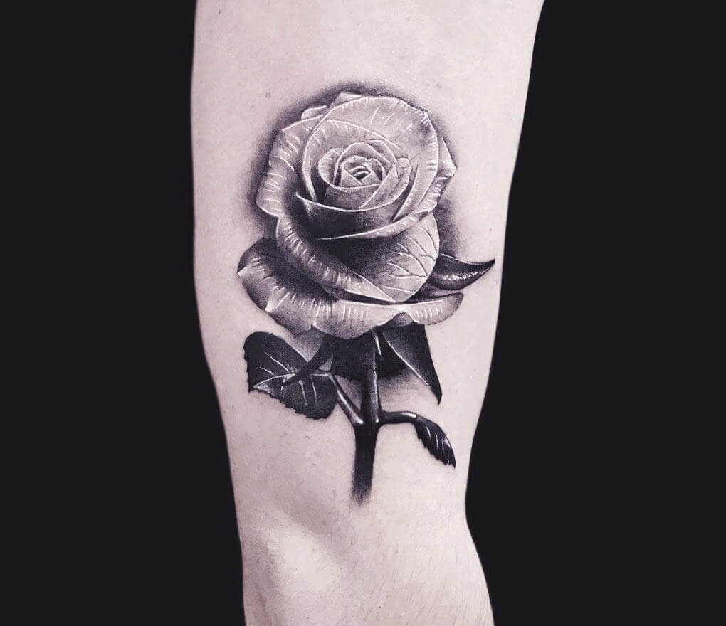 Surrealistic Rose With Stem Tattoo